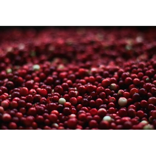 Natural Cranberry Flavor - MCT Oil Soluble