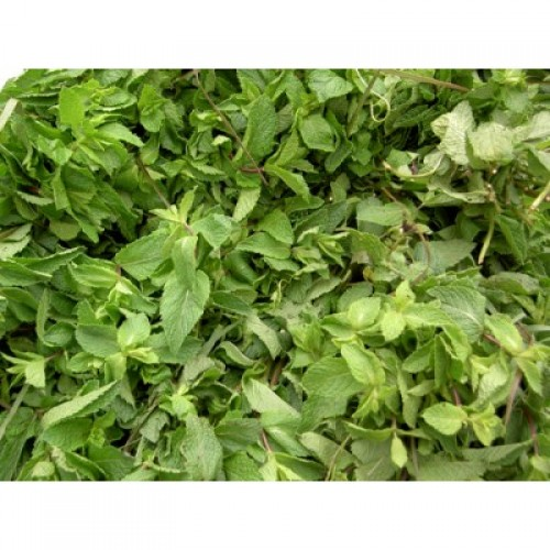 Natural Mint Flavor WONF - MCT Oil Soluble